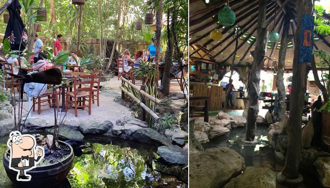 """Здесь можно посмотреть фотографию ресторана """"La Cueva del Chango"""""""