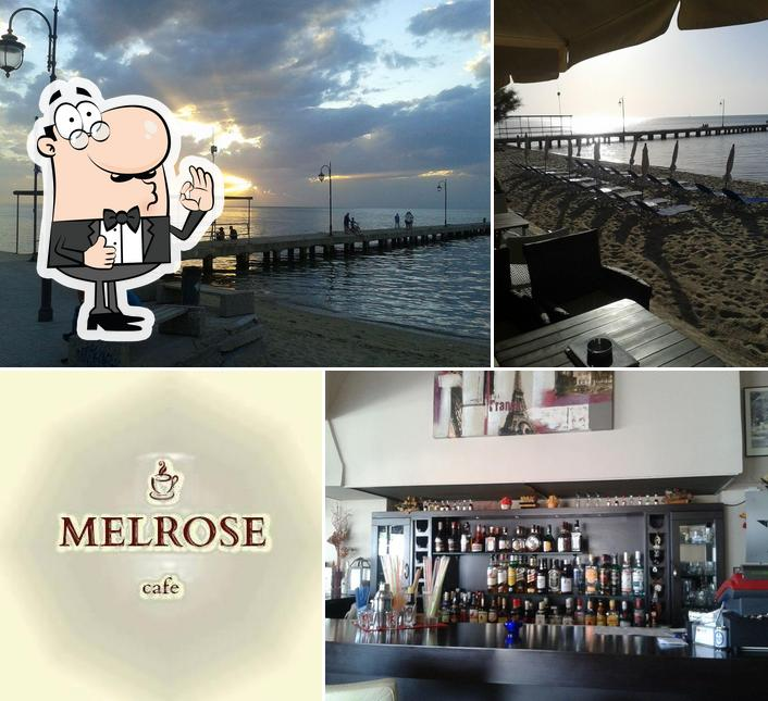 Look at the pic of Melrose