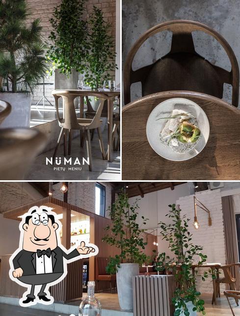 Die Inneneinrichtung von Nüman