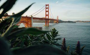 Restaurantes en San Francisco para una cena especial