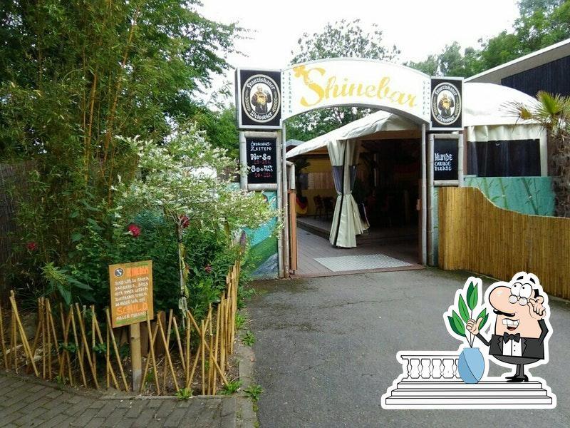 Seecafe Shinebar Hemmingen Restaurant Reviews