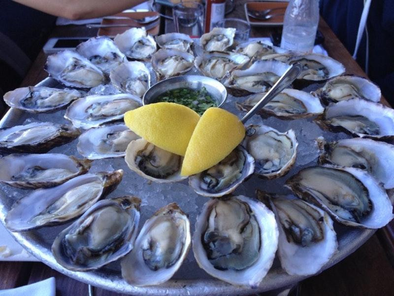 Foto de Hog Island Oyster Co.
