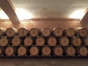 The Madrid Wine Experience