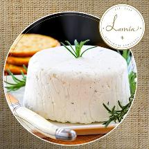 Lamia - Salutem Bastion