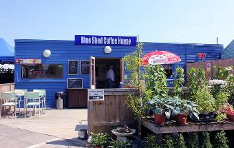 The Blue Shed Coffee House