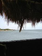 Coco Mar