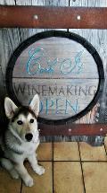 Cork It Wine Making