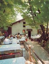 Antico Grotto Fossati