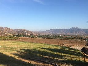 The Wine Route