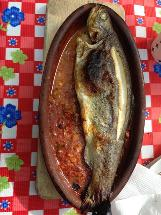 Gazi Balık