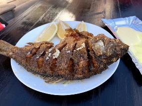 Rybna Ferma