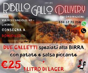Ribello Gallo