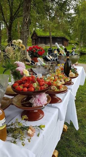Solems Selskap & Catering