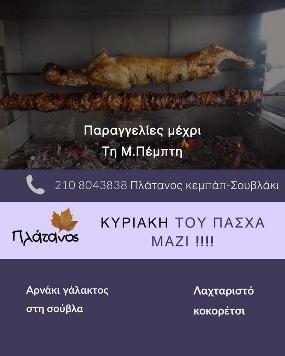 Plane Kebab-Souvlaki