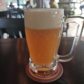 Siri Beer Moema