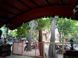 Erzurum Yaprak Döner