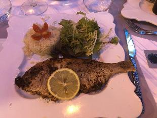 Le Stephano S Restaurant Sainte Maxime Restaurant Reviews