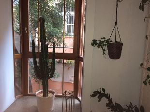 Ginko Greenhouse