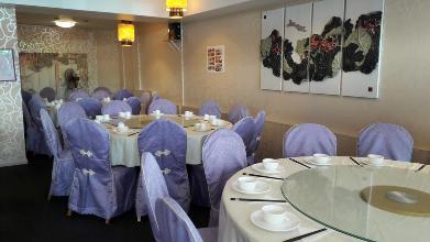 South City Restaurant In Dunedin Restaurant Reviews