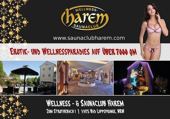 Sauna harem Sauna Club