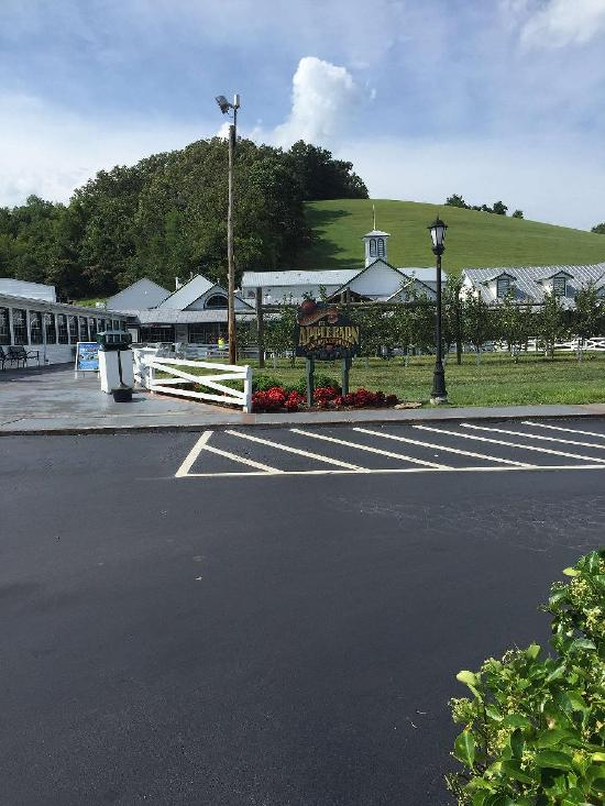 Apple Barn Winery in Sevierville - Restaurant menu and reviews